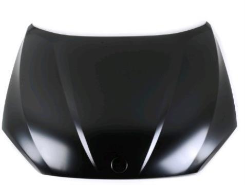 Capó del motor para BMW X1 (E84)